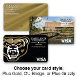Platinum Visa Card Style Options
